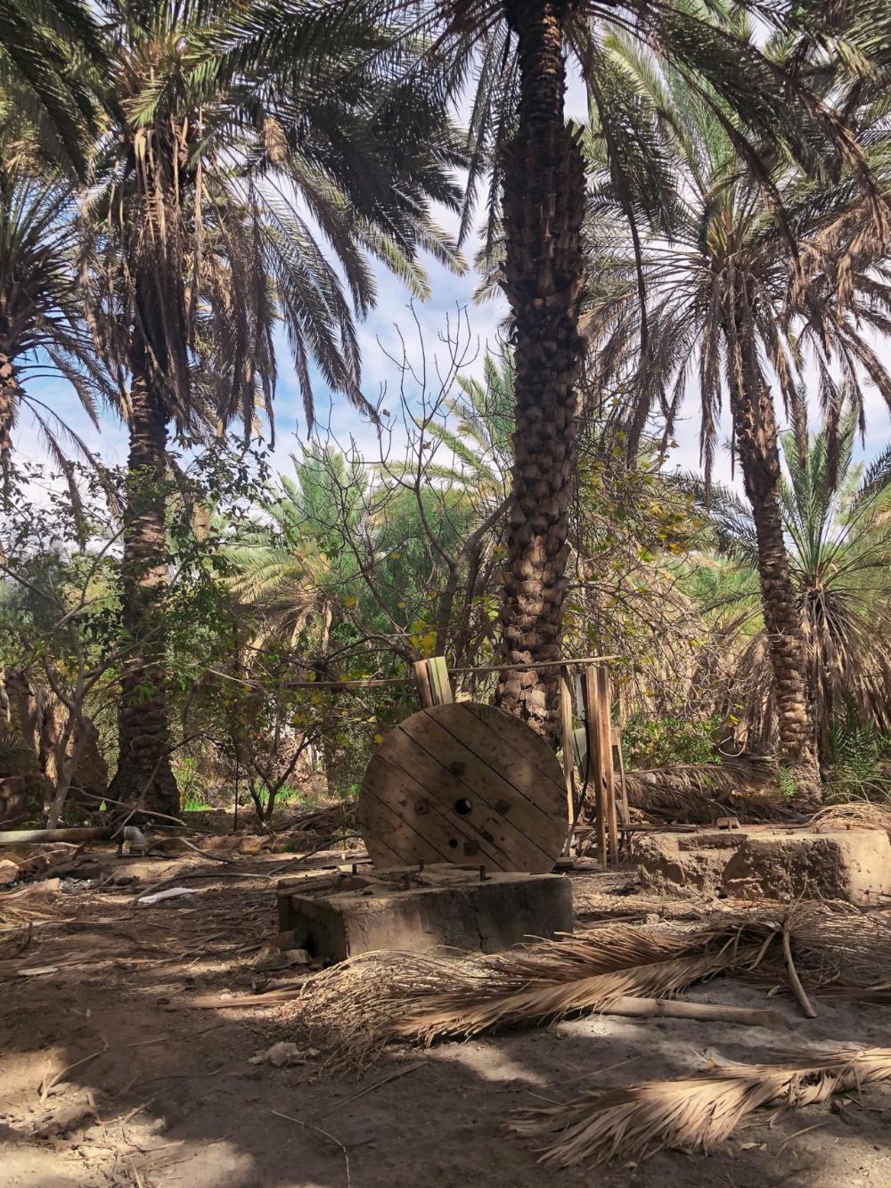 محافظة محايل عسير في السعودية اقرأ السوق المفتوح