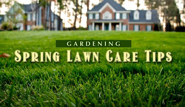 Lawn Care Tips   Gardening: Spring Lawn Care Tips