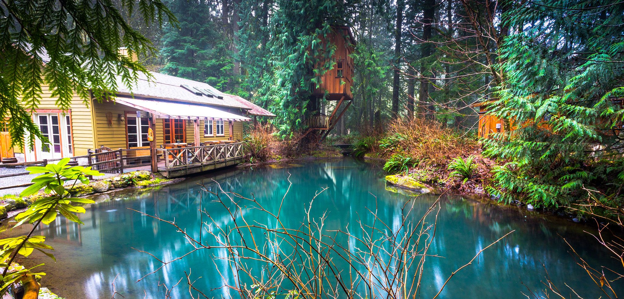 Pond Room Events At Treehouse Point In Fall City Washington
