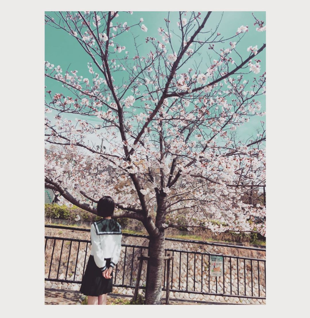 169 2k Likes 1 659 Comments 浜辺美波 Staff Minami Hamabe Official On Instagram 思い思われふりふられ In 2020 Instagram Staffing