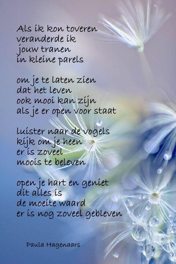 Citaten Schrijven Nederlands : Spreuk citaat nederlands teksten spreuken citaten toveren