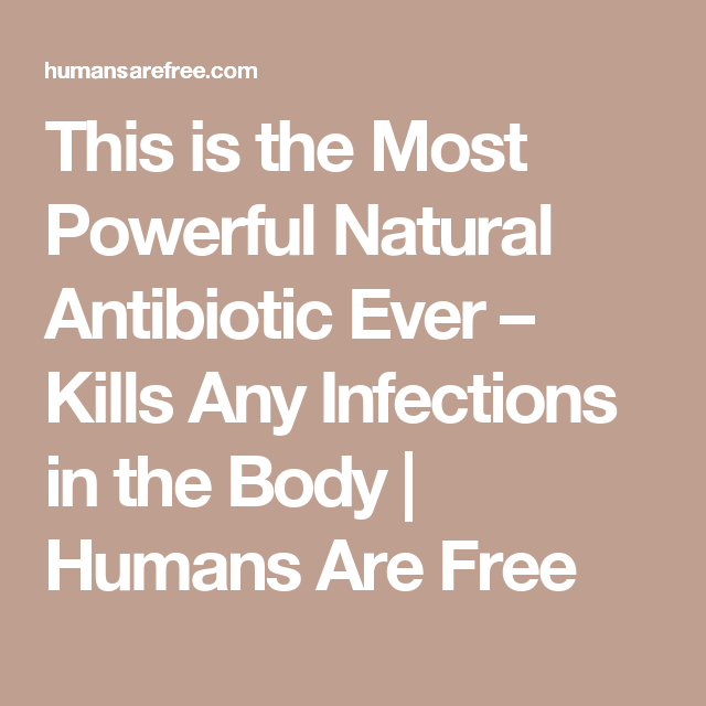 This is the Most Powerful Natural Antibiotic Ever – Kills Any Infections in the Body   Humans Are Free