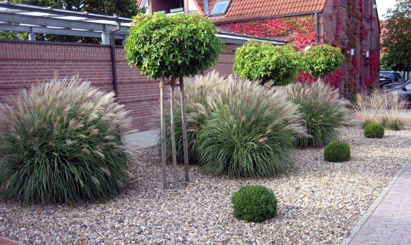 Wittinger Pflanzenhof Und Fricke Garten Und Landschaftsbau Garten Landschaftsbau Garten Landschaftsbau