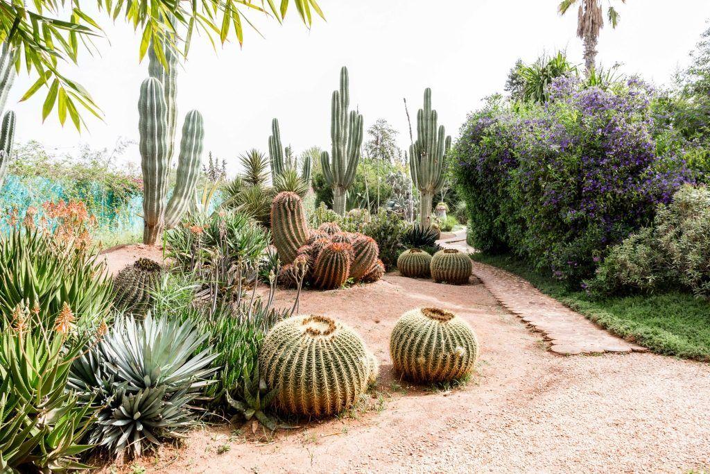 Geheimtipp Marrakesch Der Anima Garten Ein Ausflug Ins Paradies Marrakesch Garten Ausflug