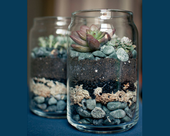 Mason Jar Decorating Ideas Mason Jar Ideas  Diy Mason Jar Terrarium Via Brittany And Dylan