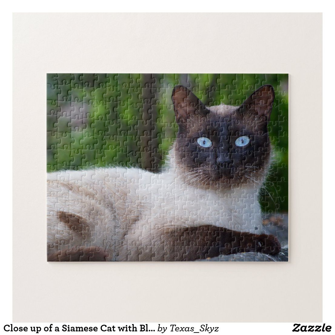 Close Up Of A Siamese Cat With Blue Eyes Jigsaw Puzzle Zazzle Com In 2020 Cat With Blue Eyes Cat Jigsaw Puzzle Siamese Cats
