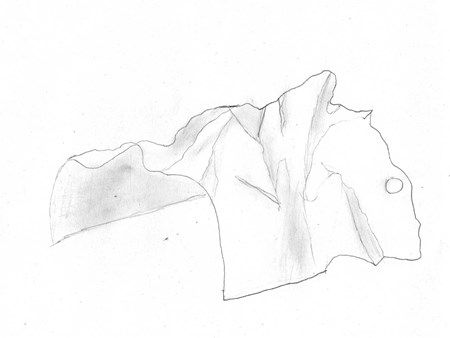 Contour Line Drawing Th Grade : Contour line drawing by natalie student art work