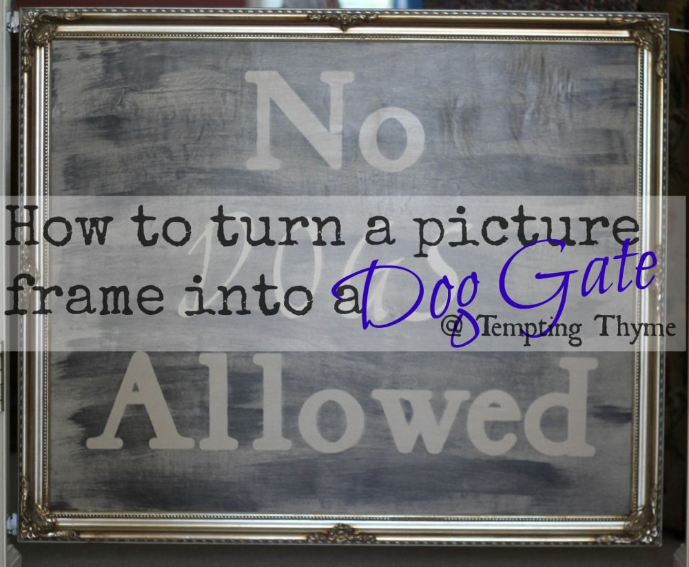 DIY Dog Gate !   DIY Home Projects ...