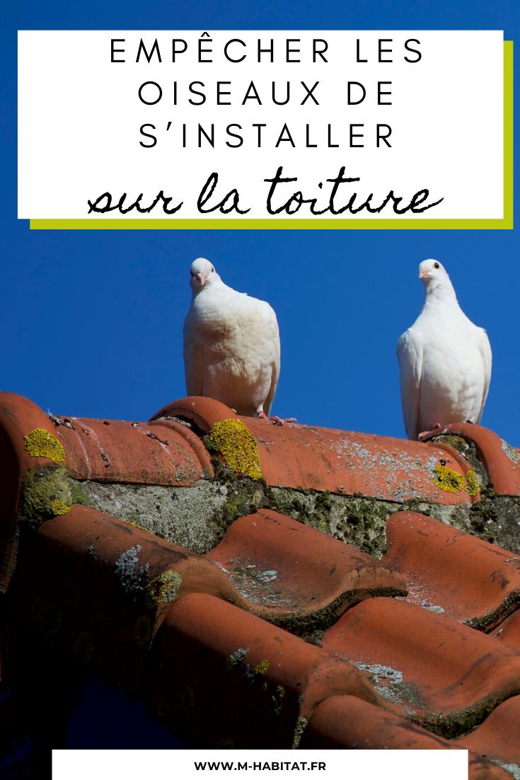 Comment Empecher Les Oiseaux De S Installer Sur Une Toiture En 2020 Toiture Oiseaux Toiture Tuile