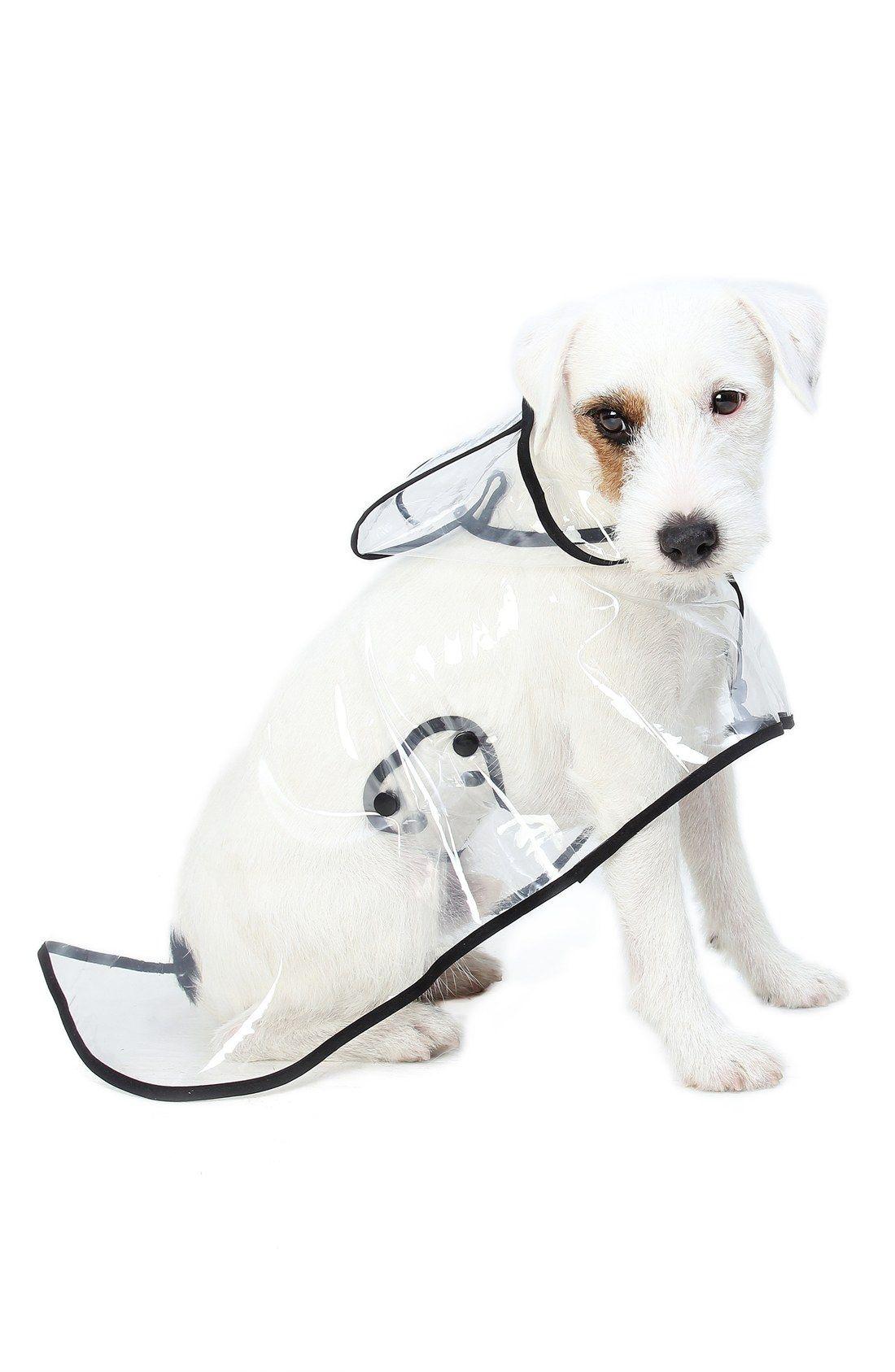 Romy Jacob The City Vinyl Dog Raincoat Dog Raincoat Dog Day Afternoon Dogs