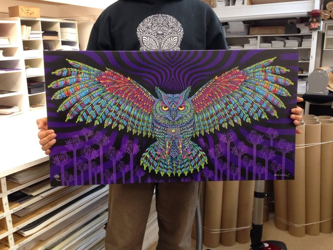 Electric Forest Owl