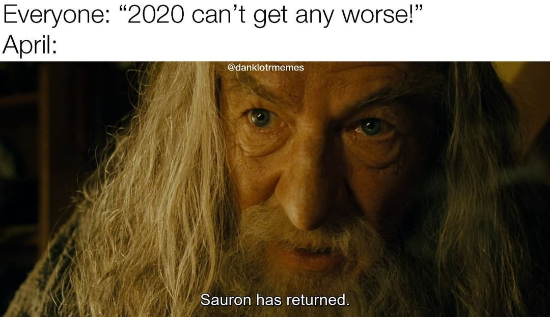 Wouldn T Be Surprised At This Point In 2020 Lord Of The Rings Lotr Funny Hobbit Funny
