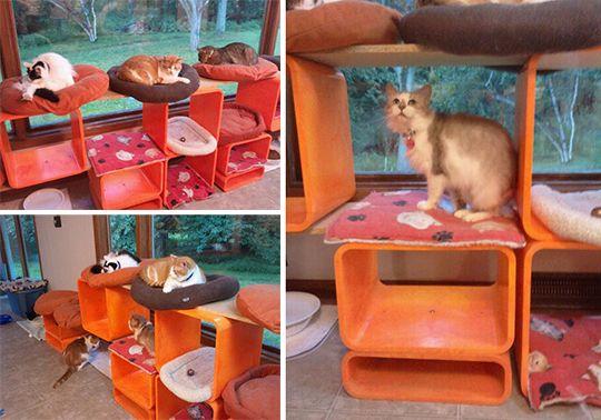 Re-utilizados Muebles Escalada Cat