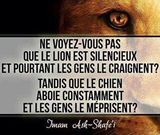 Un Lion Marche Seul Proverbes Et Citations Phrase