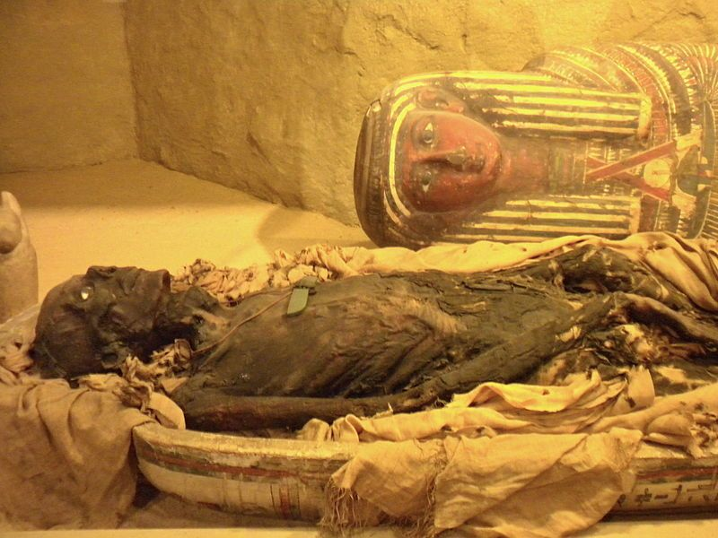Image result for museum of anthropology and archaeology in philadelphia mummies