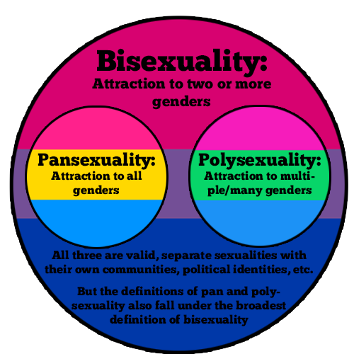 What does pan sexuality mean
