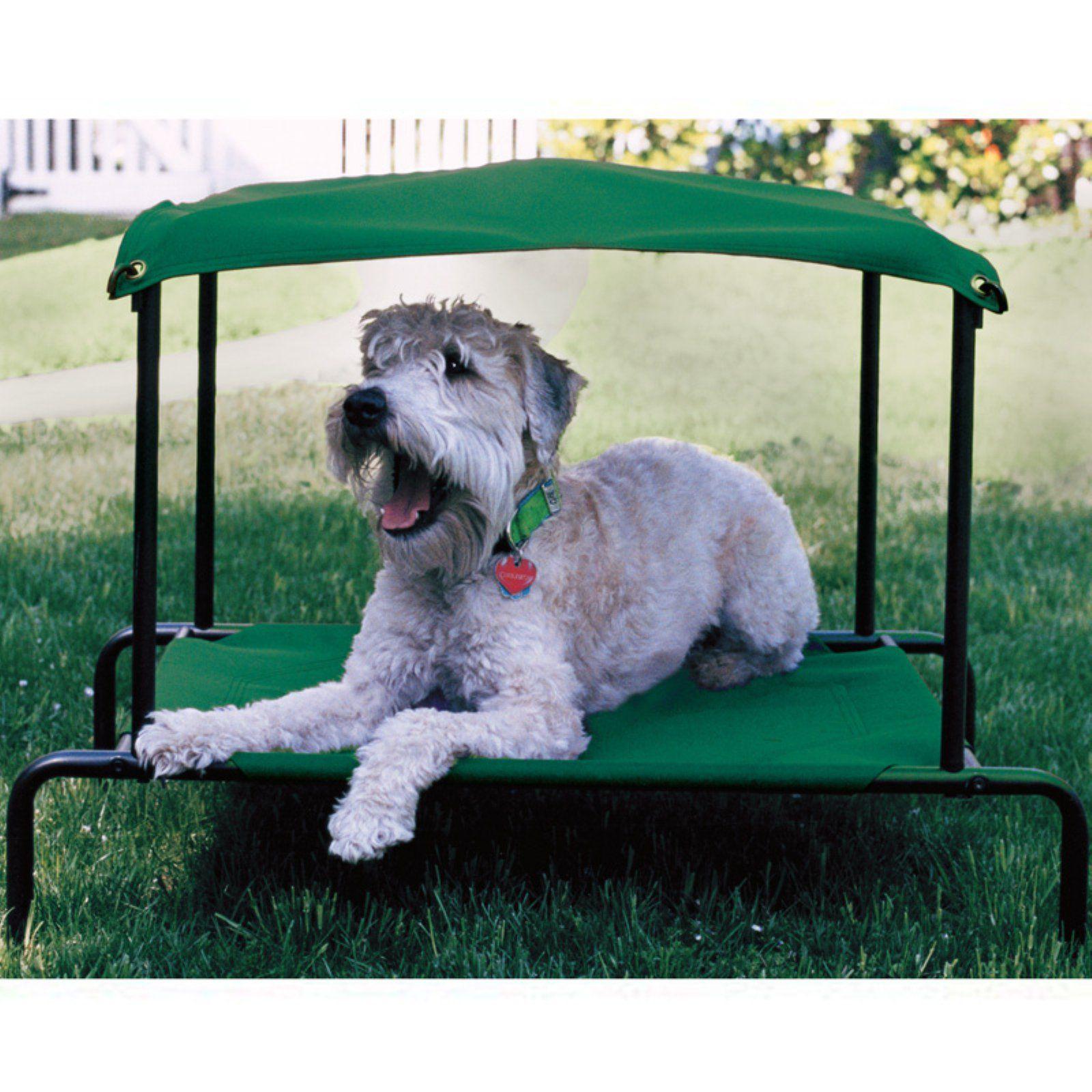 Pets (con imágenes) Cama para perro, Cama elevada perro