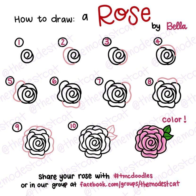 How To Draw A Rose Doodle Tutorial With Bella With Images