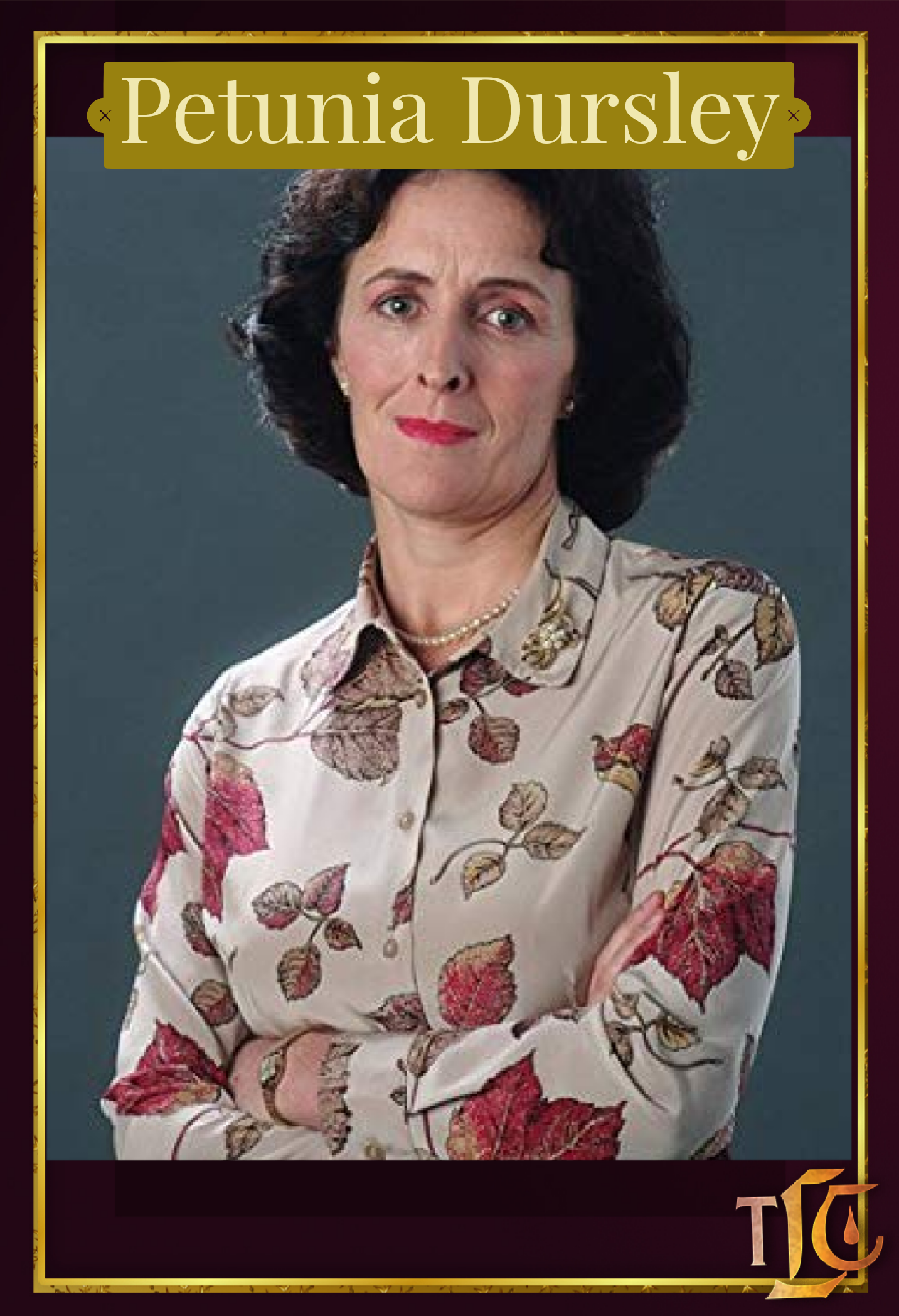 Leaky S Character Gallery Petunia Dursley Harry Potter Daniel Radcliffe Perfect Sisters