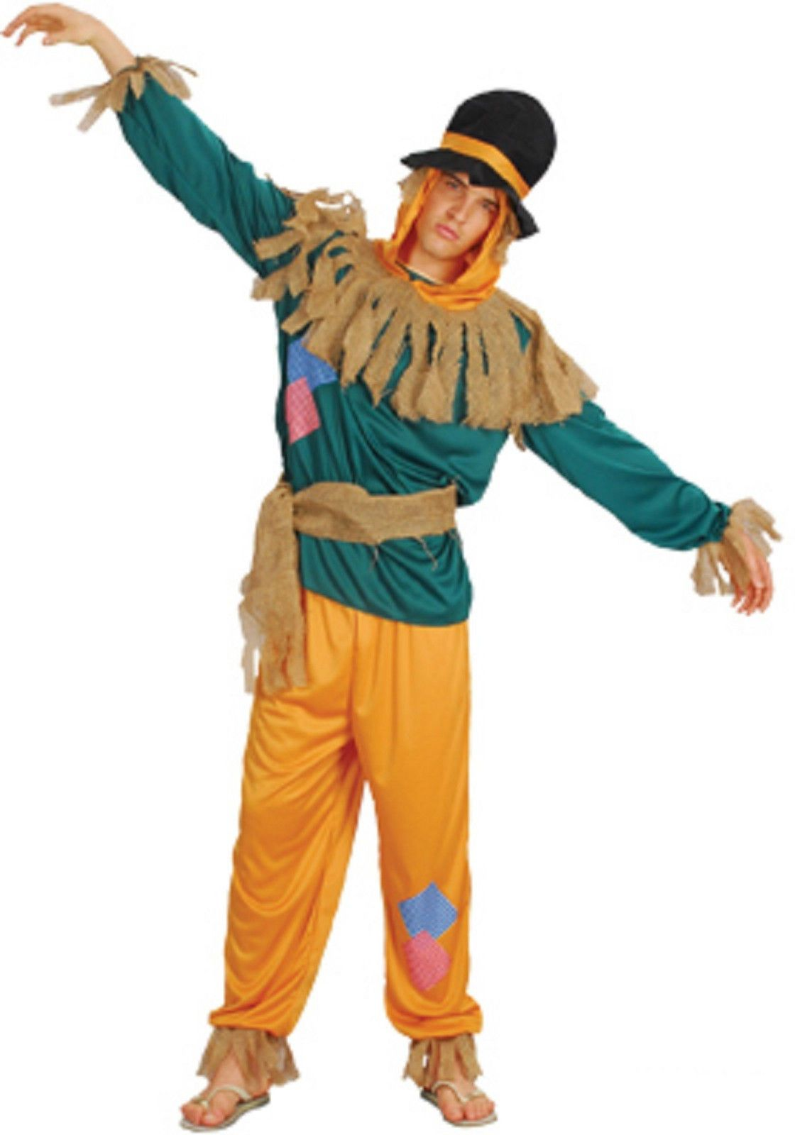 Mens Costume Fancy Dress Up SW Halloween Scarecrow Wizard of oz Size - Wizard Of Oz Halloween Decorations