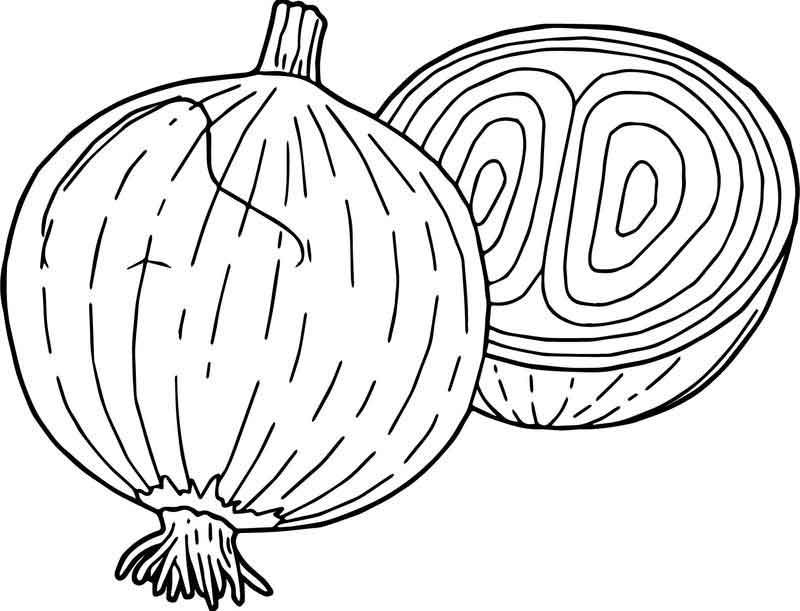 Vegetables Onion Coloring Page Coloring Pages Vegetable Coloring Pages Free Coloring Pages