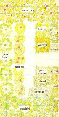 Vegetable Garden Planner, Vegetable Gardening Tips And Companion Gardening