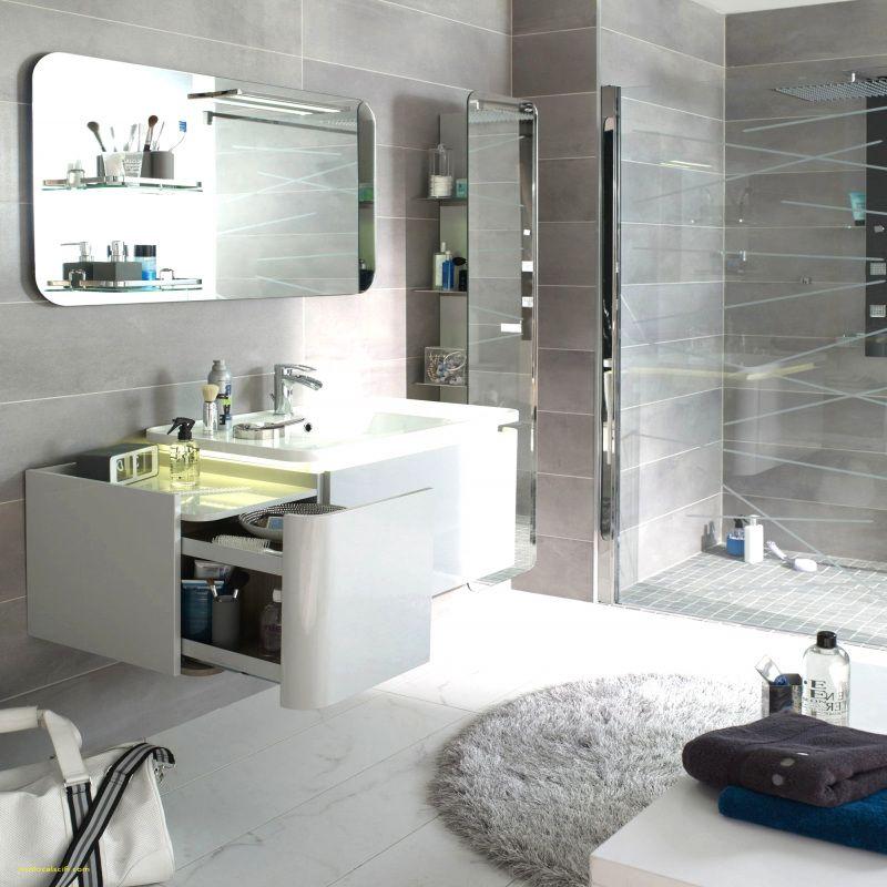 50 Idee Petite Salle De Bain 5m2 2019 With Images Modern Bathroom Bathroom Design Gorgeous Bathroom