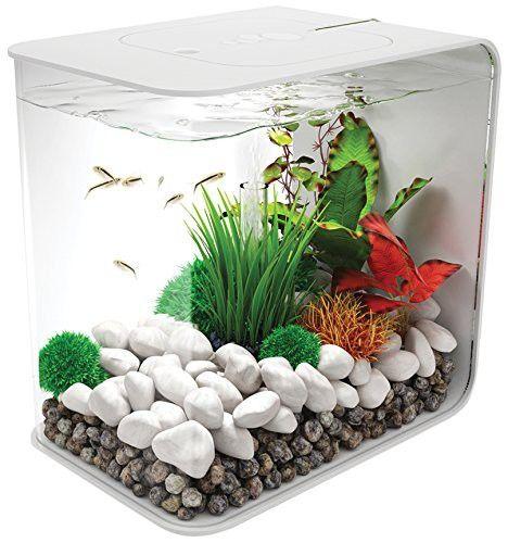 BiOrb 45924.0 Flow 30 LED White Aquariums Betta fish