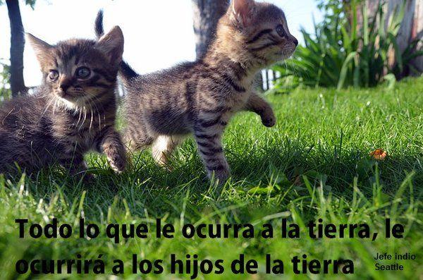 ERIKA PATRICIA ARROY (@ERIKAPATRICIAA2) | Twitter