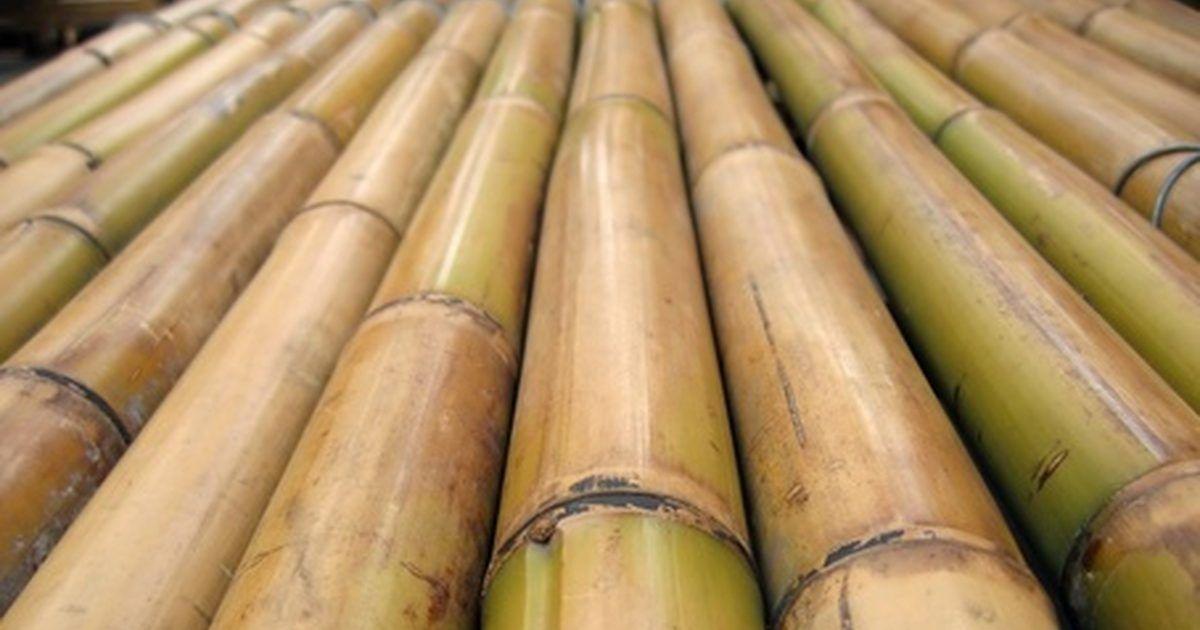 Como Doblar Palos De Bambu Pinterest Para Pescar Materiales De - Palos-de-bambu