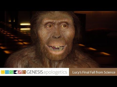 10 points about Lucy's fossils clearly prove it's an Ape. -- Dr. Dan Biddle | Real Science Radio Interview - RSR.org