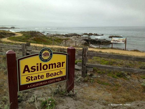 The Main Sign At Asilomar State Beach Pacific Grove Monterey Peninsula