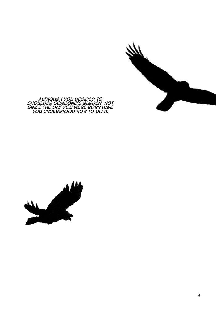 Wallpaper Burung Gagak
