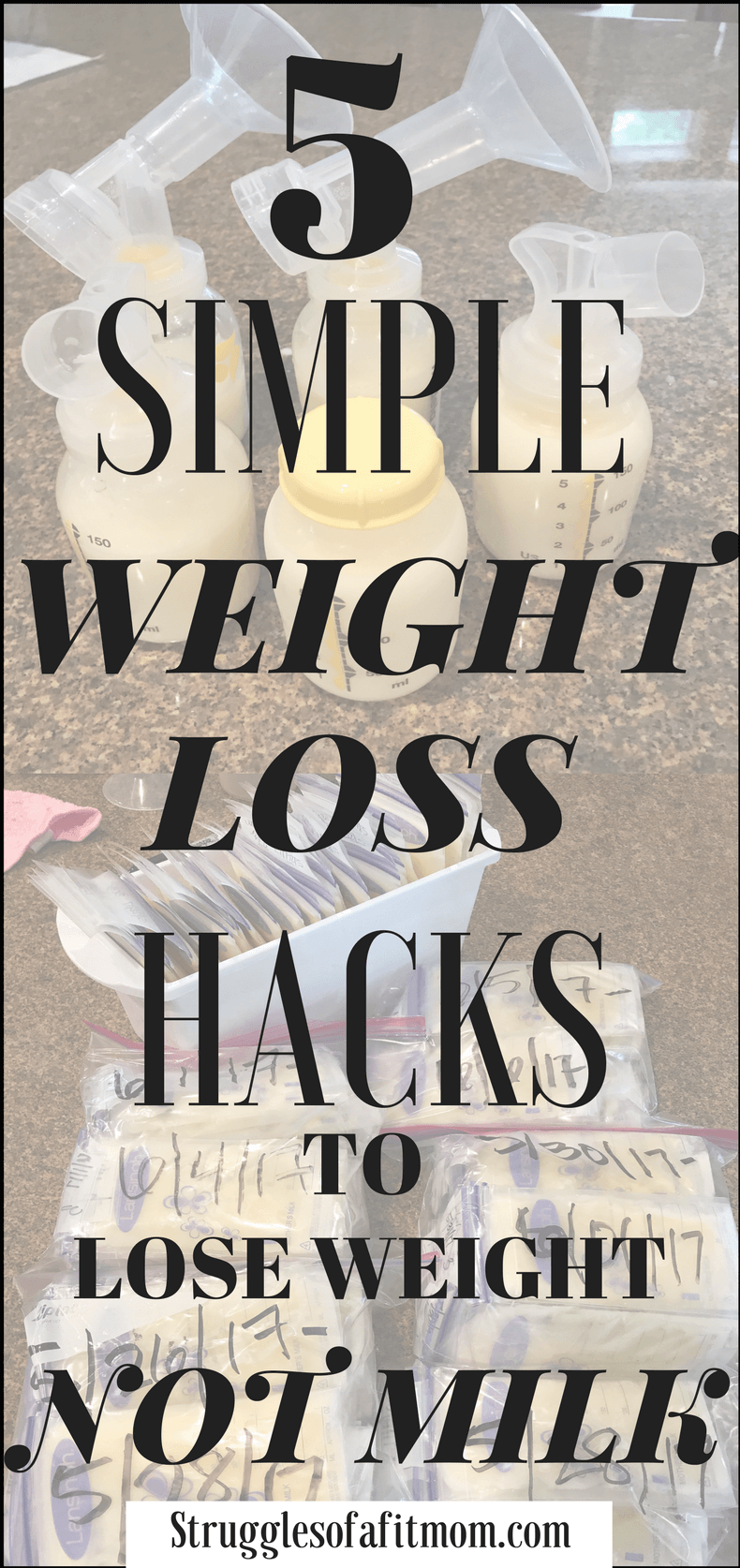 Fat Loss Small Meals