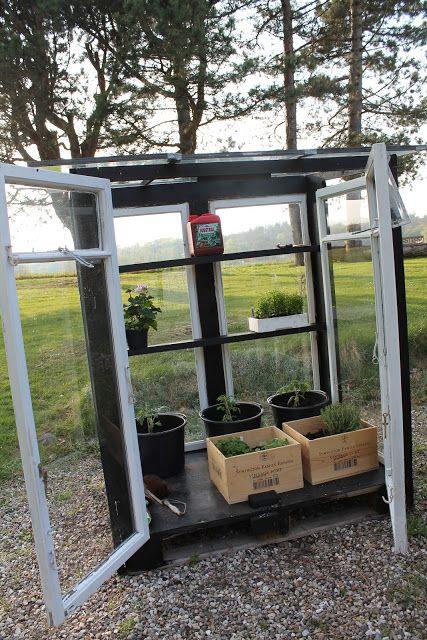 More DeliSious: En tur på genbrugspladsen blev til et drivhus