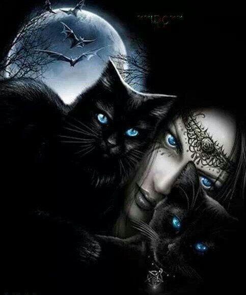 смотря то, кошка ведьма картинки рисунок потом