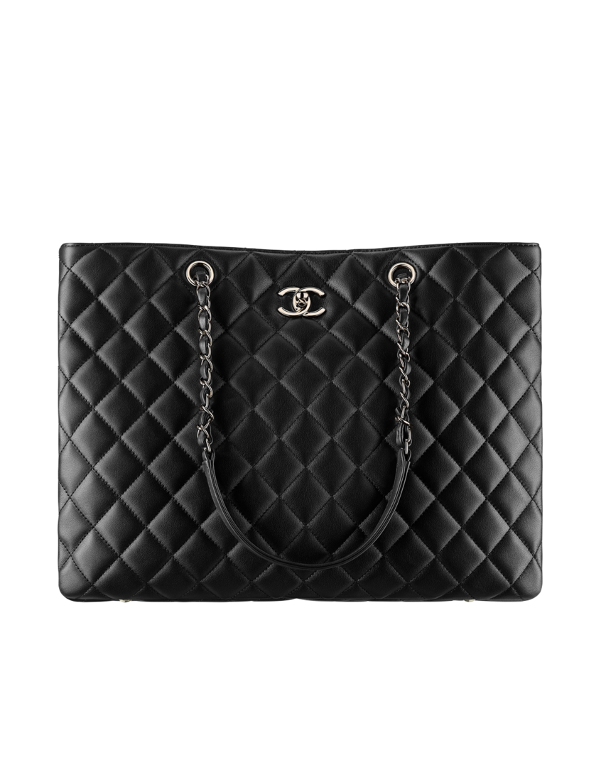 56fdba7181 The Fall-winter 2017 18 Pre-collection Handbags collection on the CHANEL  official website