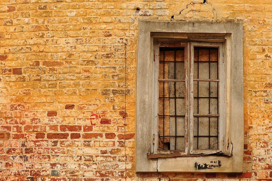Window  by Nick_Kaiser