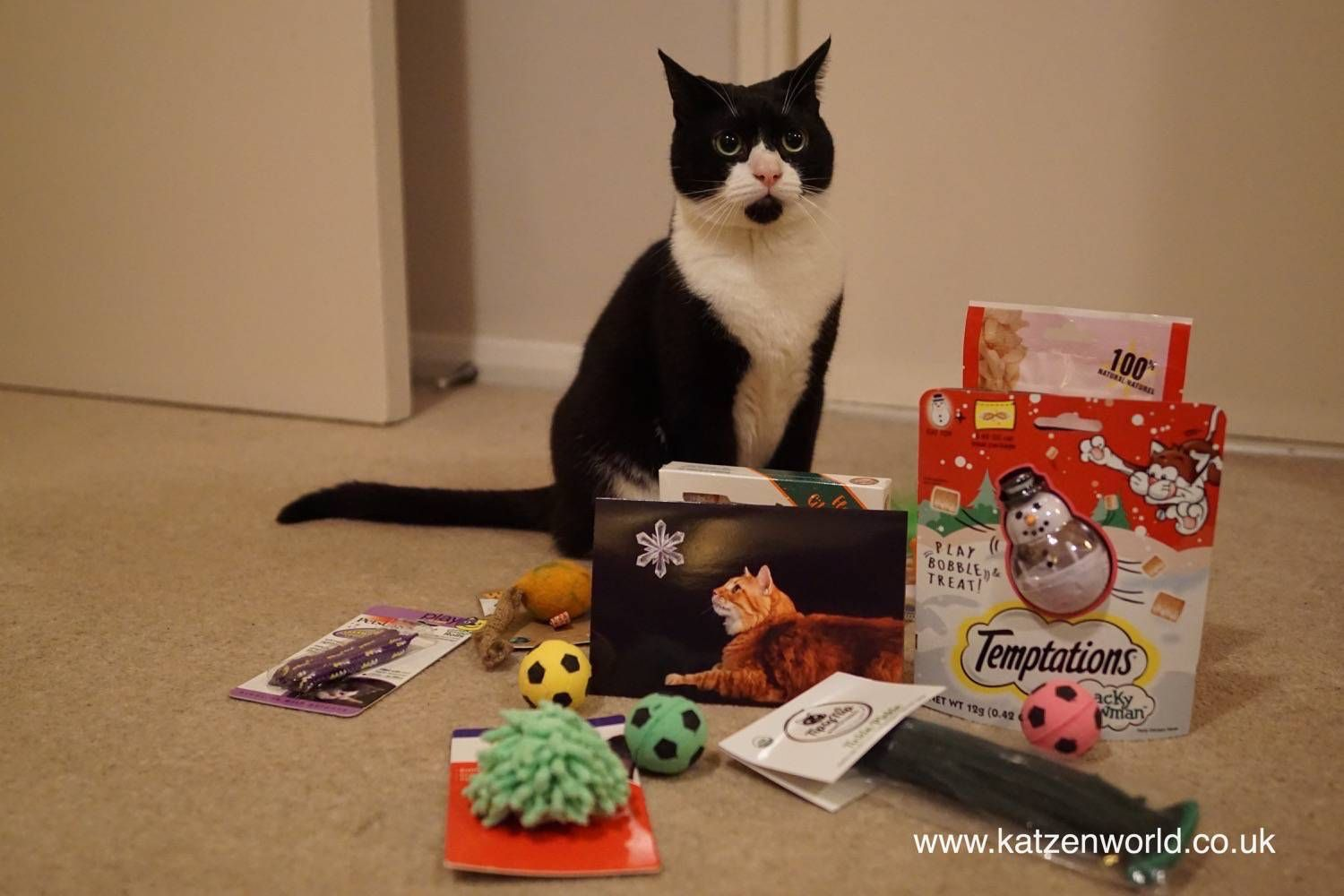 Oliver & Nubia: Secret Paws 2015 – The presents are here!