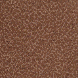 Color: 00602 Grand Canyon CCS20 Capellini - Shaw Caress Carpet Georgia Carpet Industries