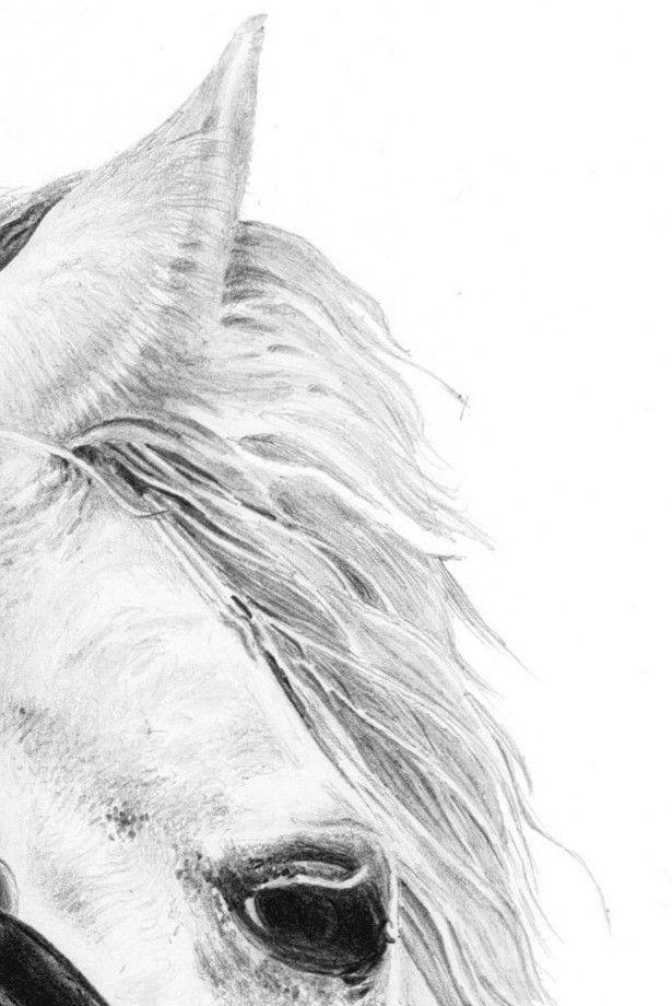 Mon Cheval Blanc Un Cheval De Reve Horses Bohemian Lifestyle Animals
