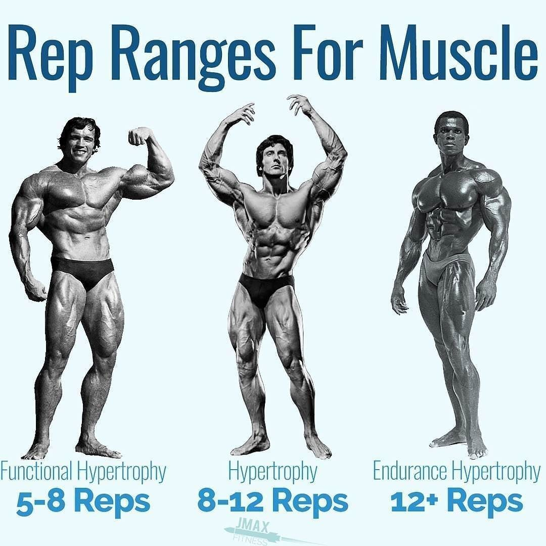 Bulking Workout: REP RANGES FOR MUSCLE By Jason Maxwell