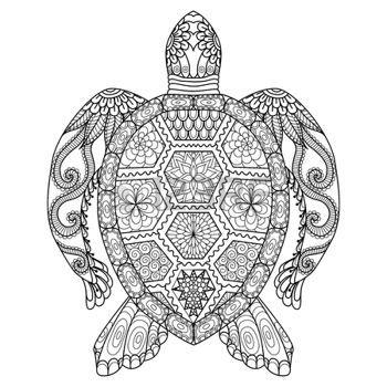 zentangle: Dibujo tortuga zentangle de la página para colorear ...
