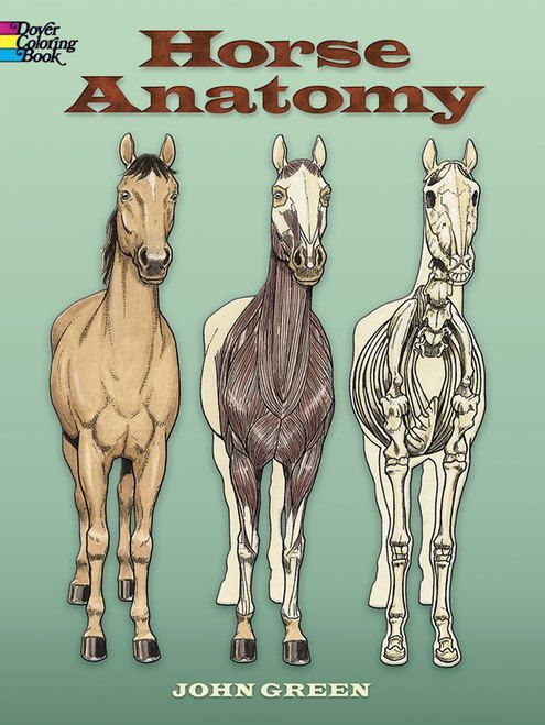 An Illustrated Guide To Veterinary Medical Terminology Ebook Rental Medical Terminology Veterinary Vet Tech School
