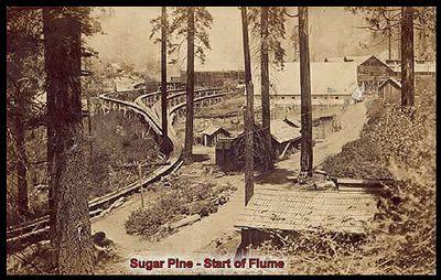 Sugar Pine Lumber Company & Madera Flume SlideShow by ...