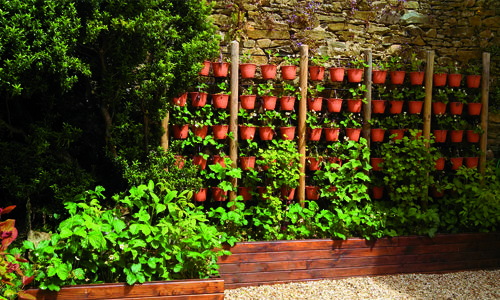 potager vertical recherche google jardin en 2018 pinterest potager jardins et fraisier. Black Bedroom Furniture Sets. Home Design Ideas