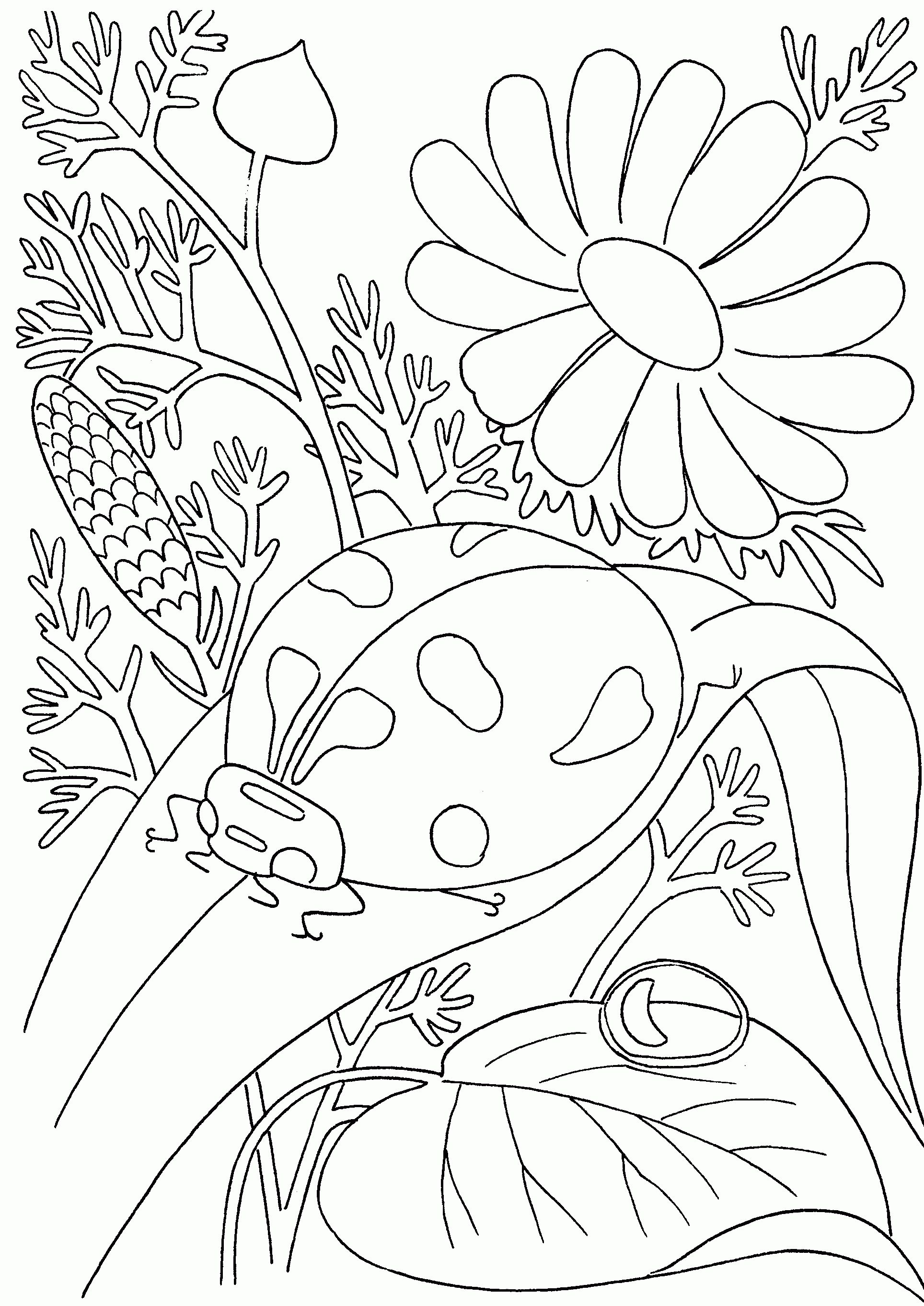 Im grateful for nature crafts coloring pages pinterest
