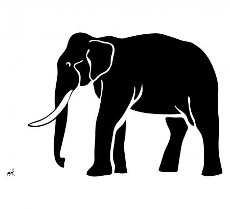 An ant and an elephant.