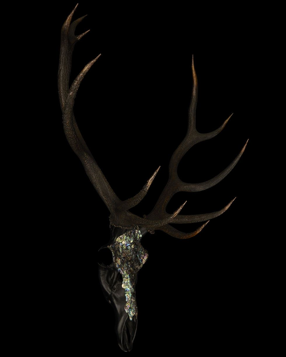 THIS REAL STAGS HEAD ANIMAL SKULL SCULPTURE IS ENCRUSTED WITH