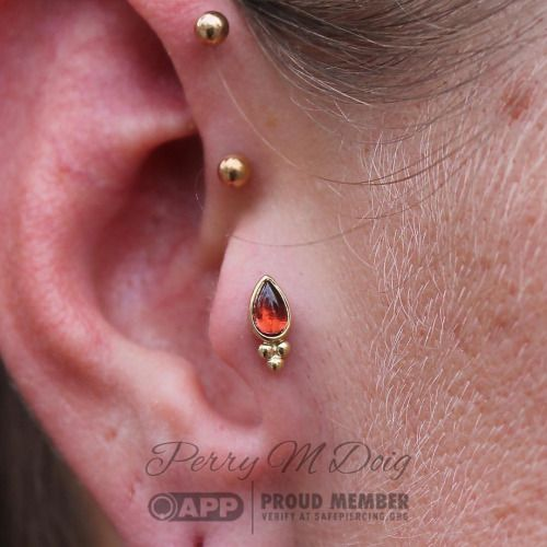 Tragus piercing by Perry M Doig of Rose Gold Tattoo and Piercing